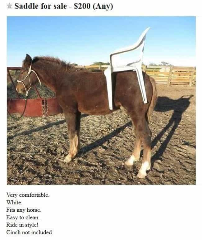 The Most Ridiculous Craigslist Ads of All Time