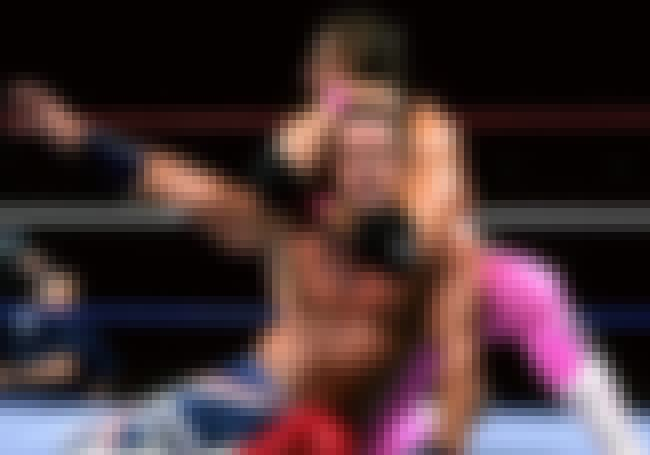 Bret Hart vs. The British Bull... is listed (or ranked) 4 on the list The Best Bret Hart Matches on the WWE Network