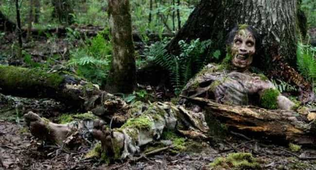 Eventually All of the Walkers ... is listed (or ranked) 1 on the list These Insane Fan Theories About The Walking Dead Will Make You Question Everything