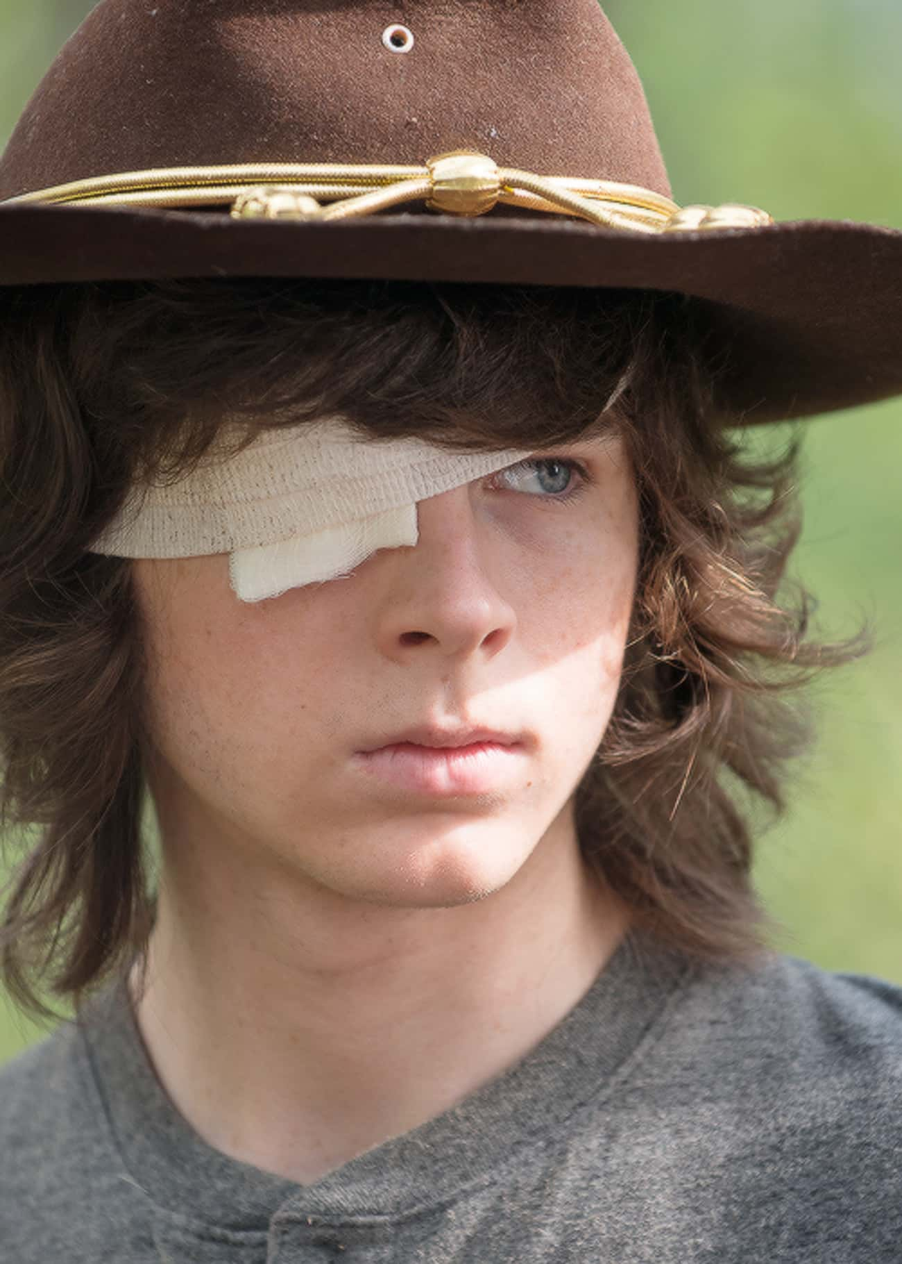 Carl Is Telling This Story as  is listed (or ranked) 4 on the list These Fan Theories About The Walking Dead Will Make You Question Everything
