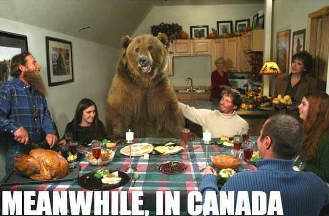 Neighbor Bear's Famous D... is listed (or ranked) 3 on the list Meanwhile in Canada . . .