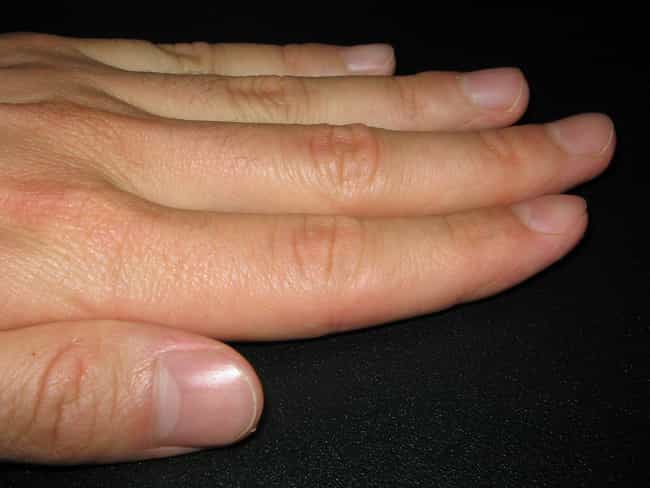 Even our fingernails hav... is listed (or ranked) 3 on the list Secrets From An Ex-Disney World Cast Member