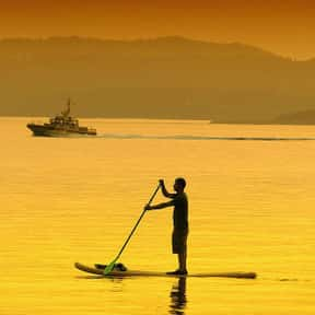 Paddleboarding is listed (or ranked) 15 on the list The Best Water Sports