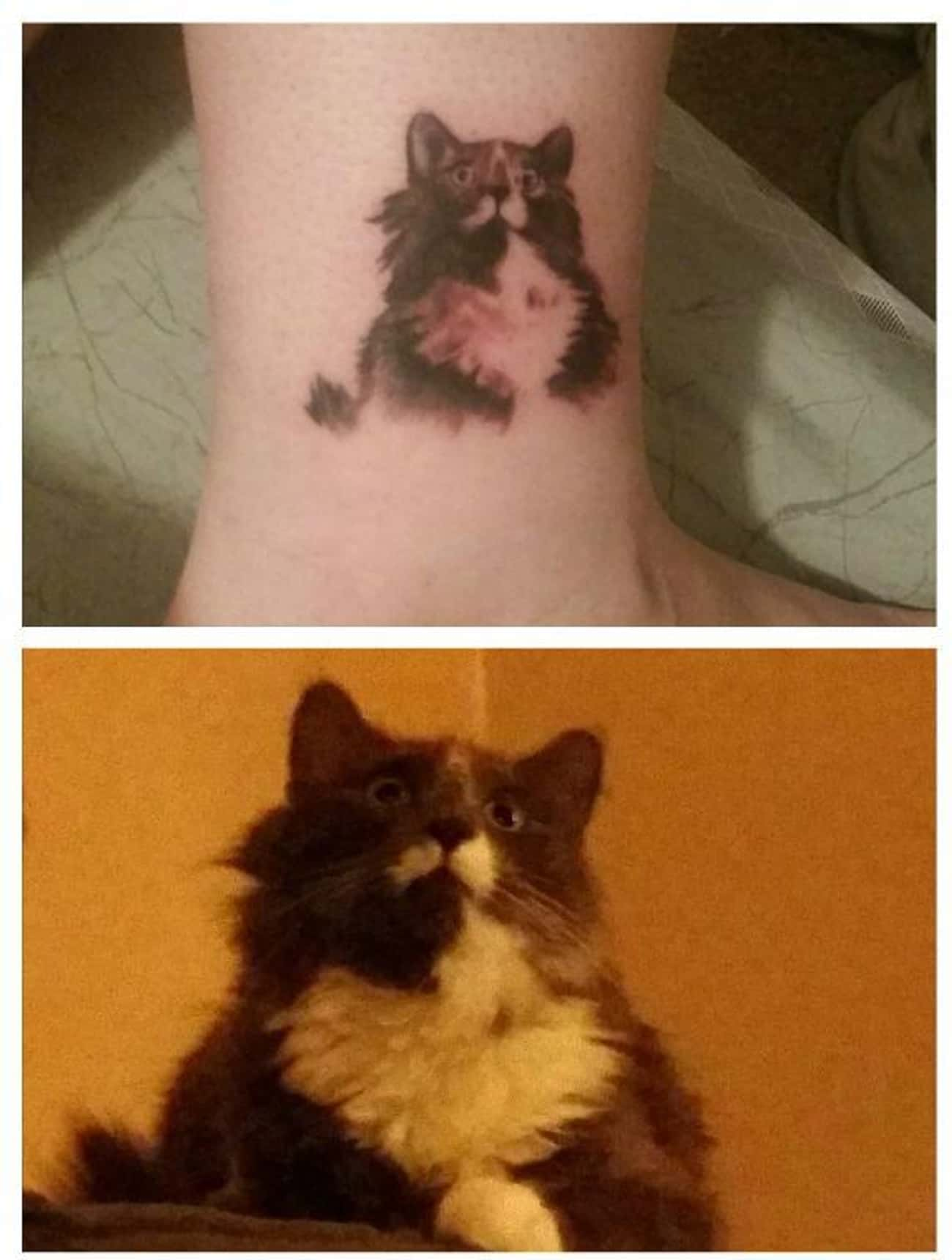 This Dude's Owner Will For is listed (or ranked) 2 on the list 33 People Who Got Tattoos of Their Pet