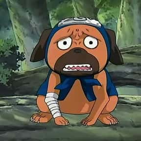 Pakkun is listed (or ranked) 8 on the list The Best Animal Characters in Anime