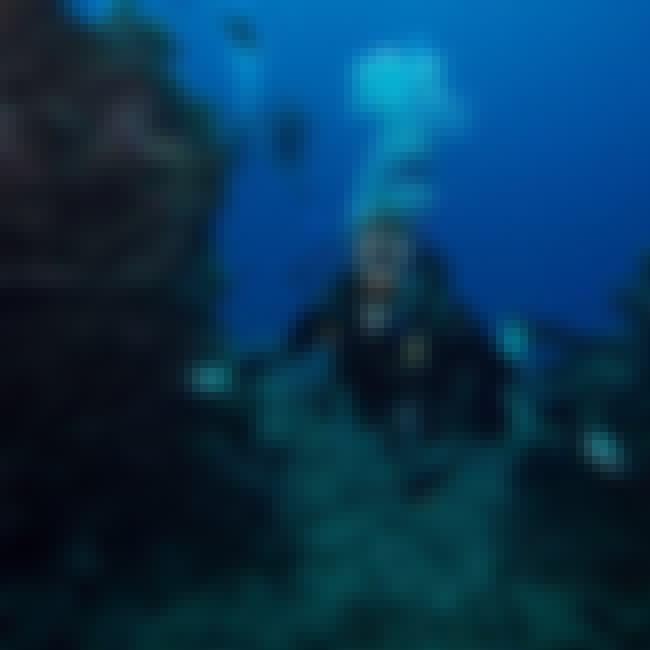 Tina Watson Died While Scuba D... is listed (or ranked) 4 on the list 15 People Who Died on Their Own Honeymoons