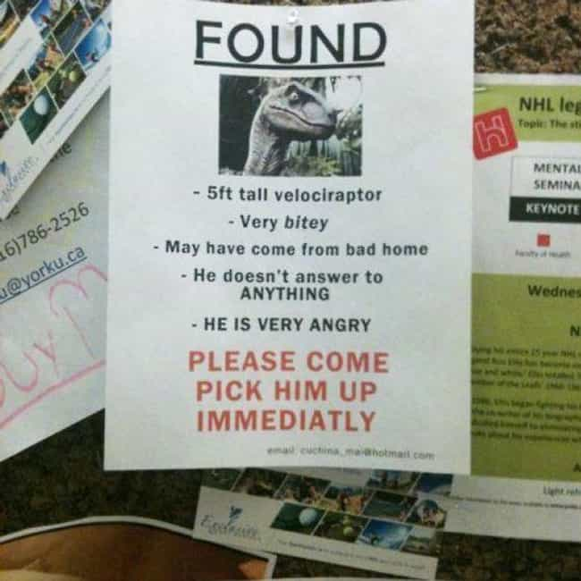 Hold onto Your Butts is listed (or ranked) 2 on the list 26 Funny Lost and Found Signs That Are on Point