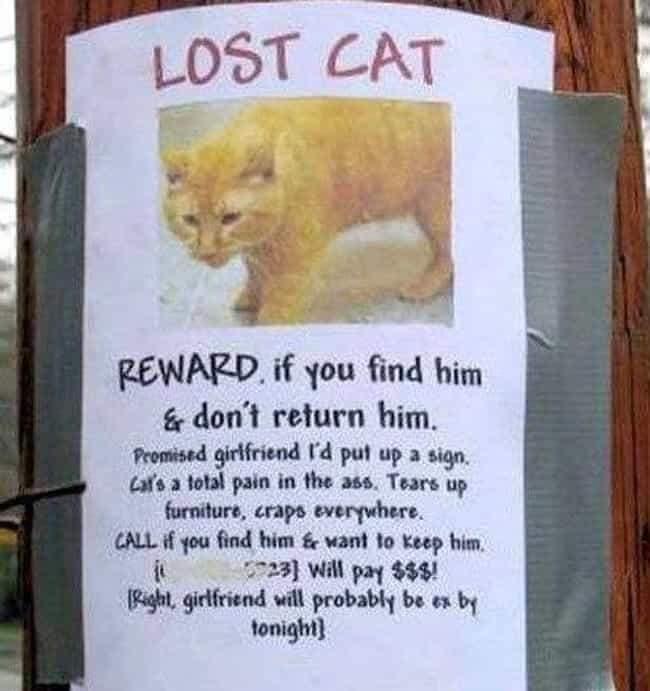 25 Funny Lost And Found Signs That Are On Point