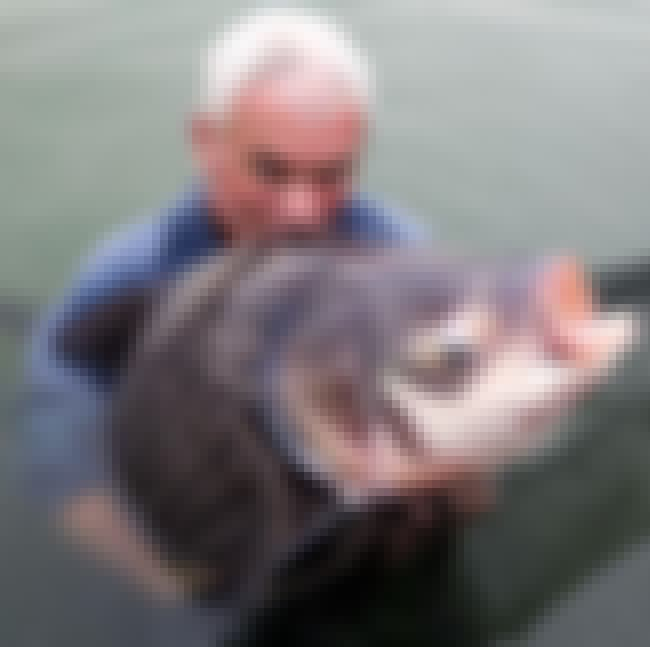 Siamese Carp is listed (or ranked) 3 on the list The Creepiest Things Ever Reeled in on River Monsters