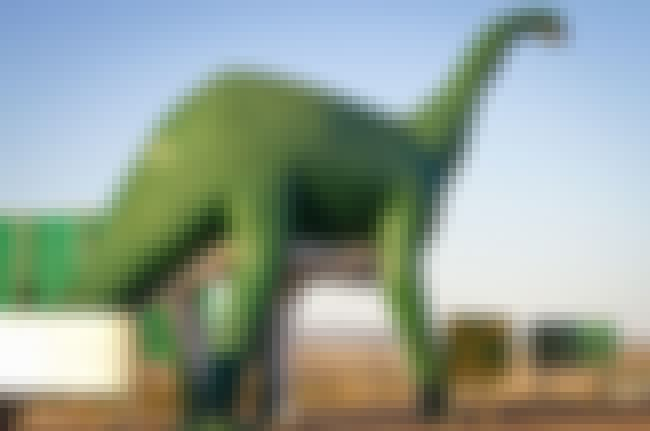 Dinosaurs Had More Days in The... is listed (or ranked) 3 on the list Things You Didn't Know About Time