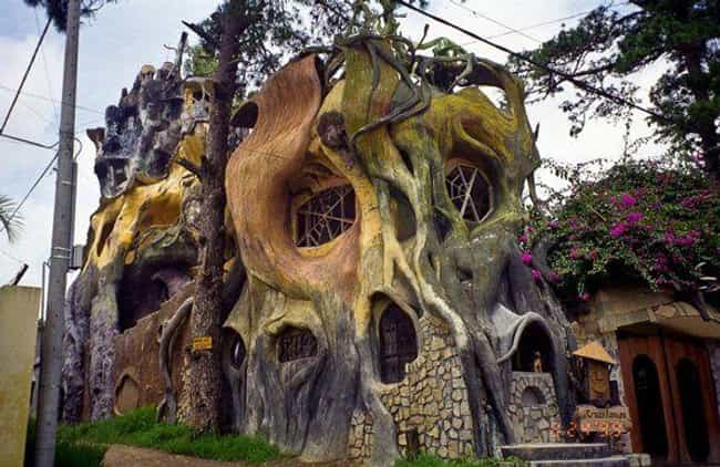 This Killer Tree-Inspired Hous... is listed (or ranked) 4 on the list Weird and Wacky Building Shapes Around the World
