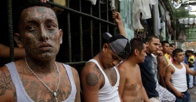 asian-gangs-vs-mexican-gangs-filipino-jailbait-porn