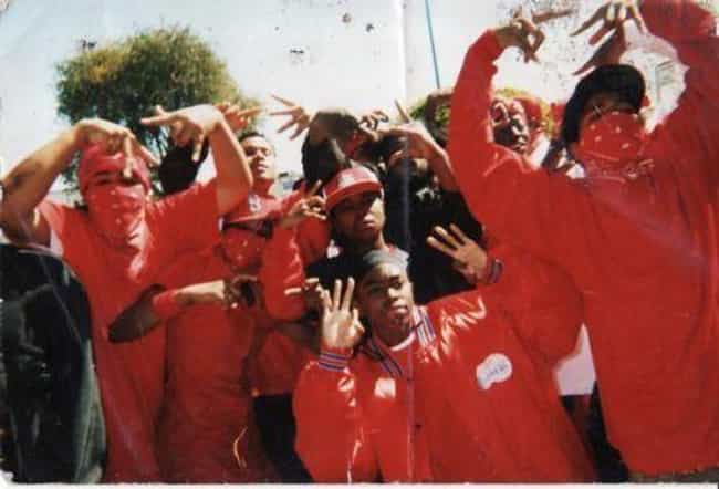 West Coast Bloods is listed (or ranked) 2 on the list All the LA Gangs and What You Should Know About Them