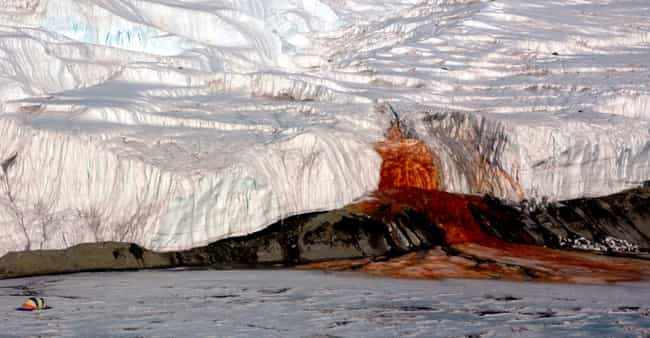 Antarctica Has a Blood-Red Wat... is listed (or ranked) 3 on the list 25 Things You Didn't Know About Antarctica