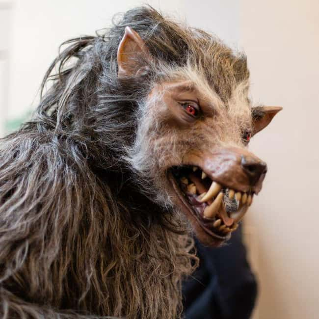 Kansas: Beaman is listed (or ranked) 16 on the list Craziest Humanoid Cryptids by State