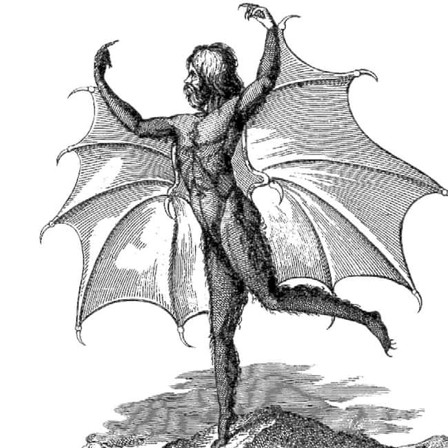 Mississippi: Man-Bat is listed (or ranked) 24 on the list Craziest Humanoid Cryptids by State
