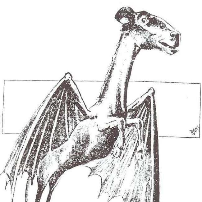 New Jersey: Jersey Devil is listed (or ranked) 30 on the list Craziest Humanoid Cryptids by State