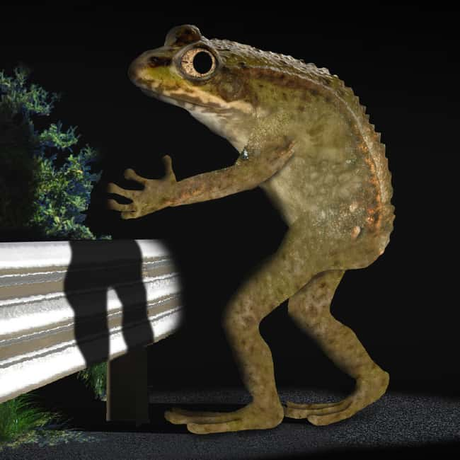 Ohio: Loveland Frogmen is listed (or ranked) 35 on the list Craziest Humanoid Cryptids by State