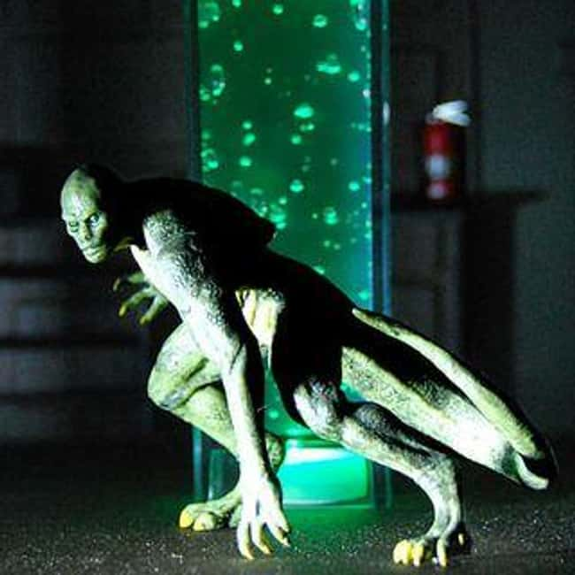 South Carolina: Lizard Man of  is listed (or ranked) 40 on the list Craziest Humanoid Cryptids by State