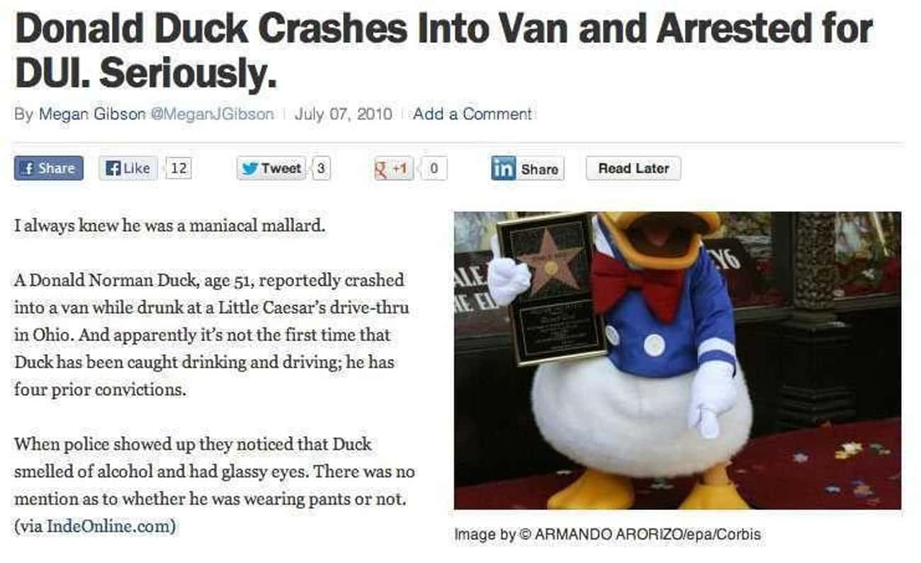 What the Duck? is listed (or ranked) 3 on the list 24 Drunk Headlines About People More Messed Up Than You
