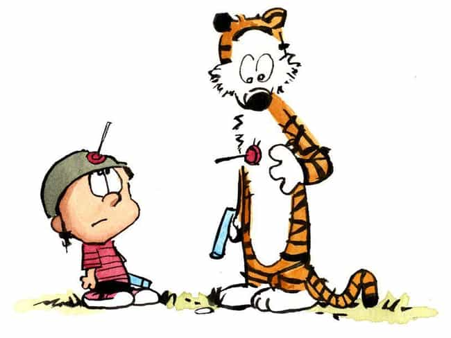 Things You Didnt Know About Calvin and Hobbes