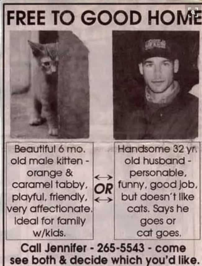 Man or Cat is listed (or ranked) 1 on the list 25 Hilarious Classified Ads You'd Respond To