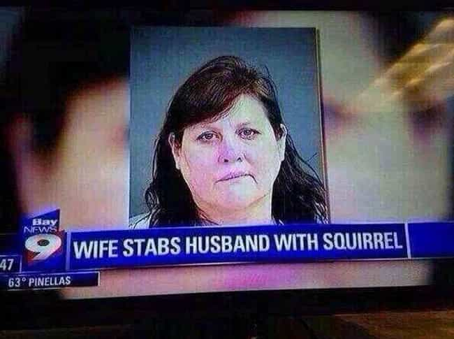 This Woman Is Clearly Nuts is listed (or ranked) 2 on the list 38 Local News Captions You Won't Believe Are Real