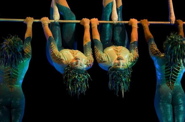 They Make Their Own Costumes is listed (or ranked) 2 on the list Crazy Facts You Didn't Know About Cirque Du Soleil