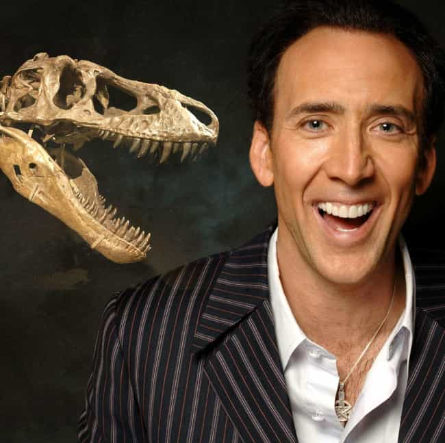 An Illegal Mongolian Dinosaur ... is listed (or ranked) 3 on the list The 12 Craziest Things Nicolas Cage Has Ever Bought