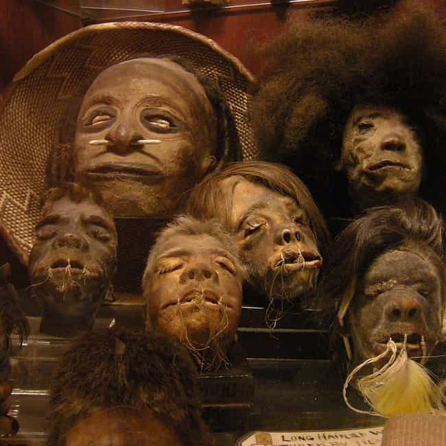 Shrunken Heads is listed (or ranked) 1 on the list The 12 Craziest Things Nicolas Cage Has Ever Bought