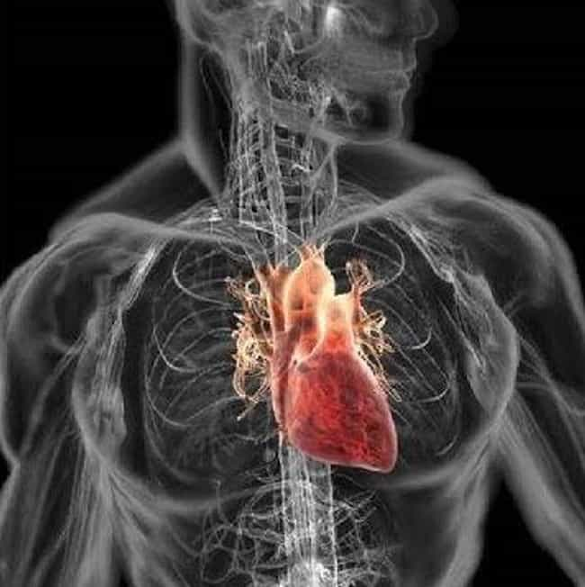 Your Heart Rate and Resp... is listed (or ranked) 2 on the list What Happens to Your Body When You Freeze to Death