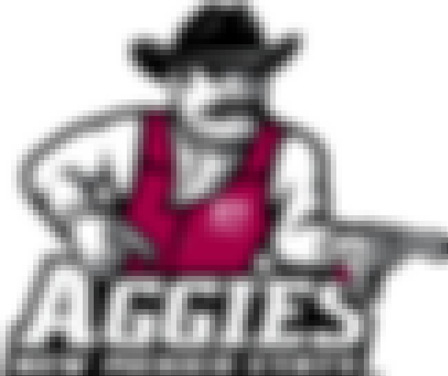 New Mexico State Aggies is listed (or ranked) 4 on the list Pretty Good Logos for Pretty Strange Sports Team Names