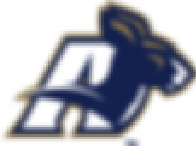 Akron Zips is listed (or ranked) 3 on the list Pretty Good Logos for Pretty Strange Sports Team Names