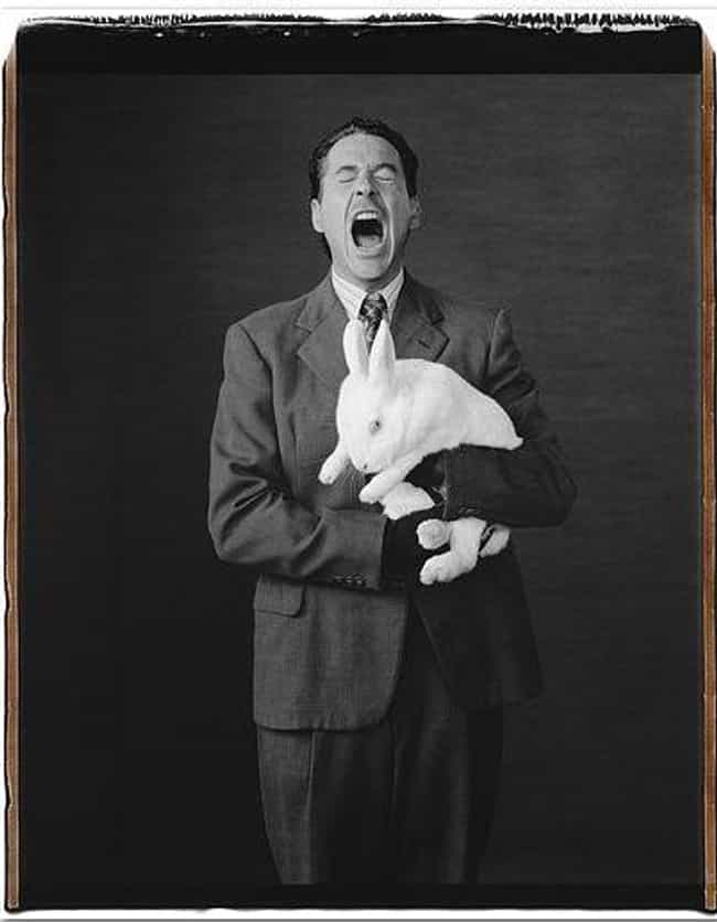 Yawning Cools the Brain ... is listed (or ranked) 4 on the list Interesting Facts You Didn't Know About Yawning