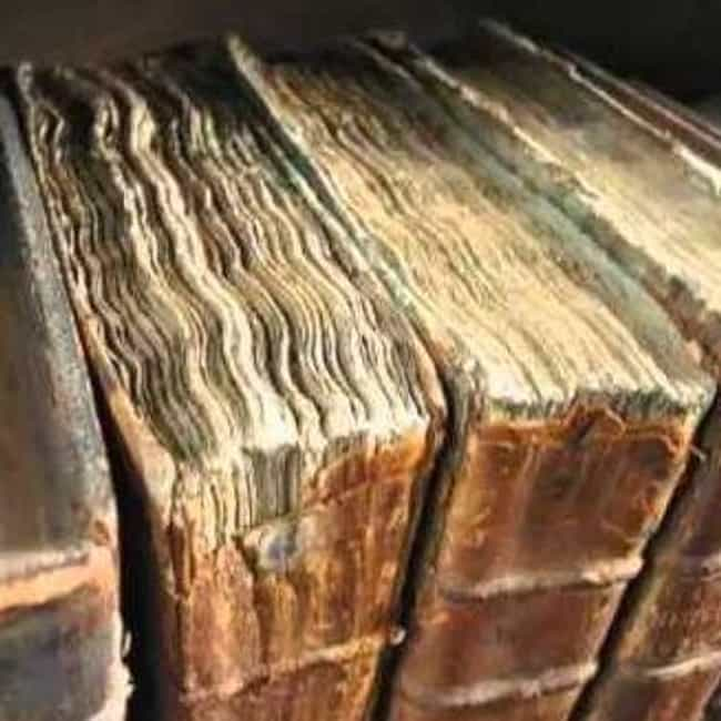 Books Bound with Human Flesh is listed (or ranked) 1 on the list 14 Creepy Things That Were Found in Libraries
