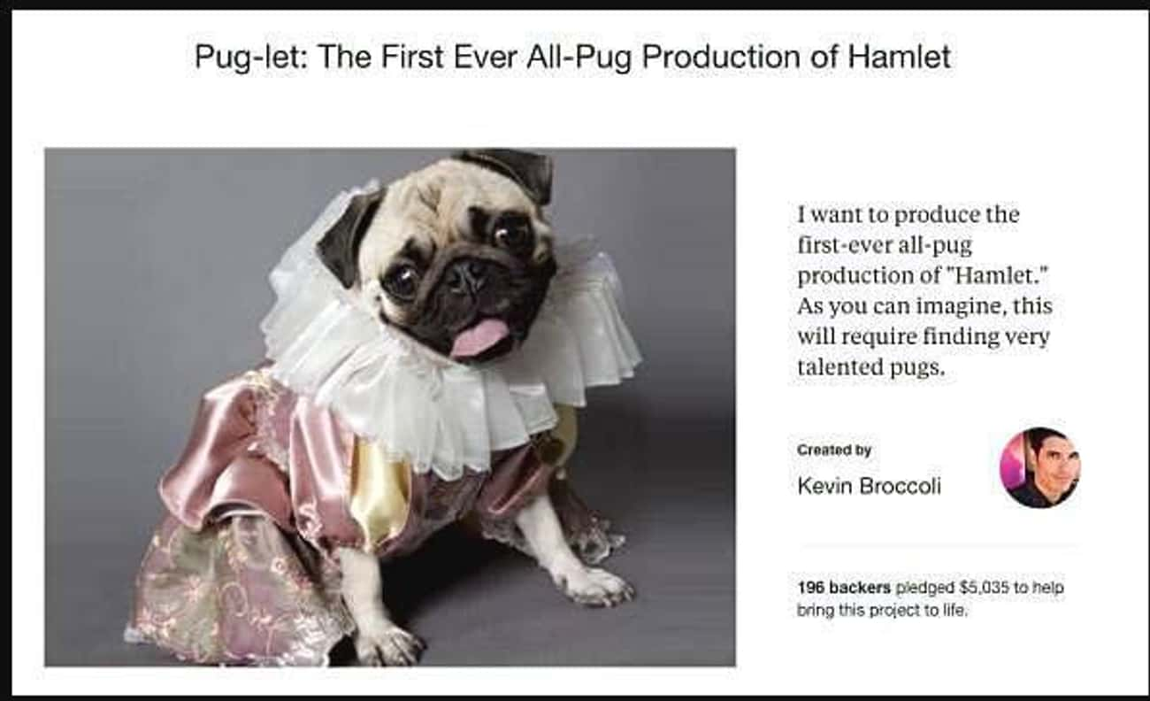 The Pug Life Didn't Choose is listed (or ranked) 3 on the list 25 Funny Kickstarter Campaigns That Should've Been Funded