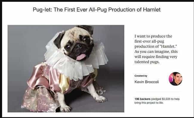 The Pug Life Didn't Choose... is listed (or ranked) 2 on the list 25 Funny Kickstarter Campaigns That Should've Been Funded