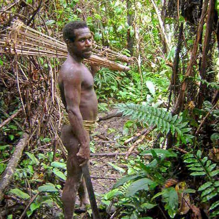 Cannibalism in New Guinea