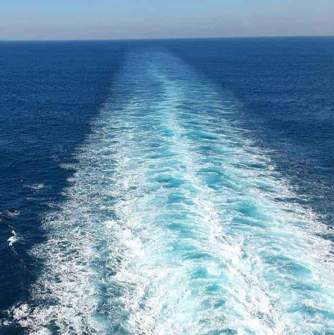 The Ship Might Not Notice That... is listed (or ranked) 3 on the list Weird Things You Didn't Know About Falling From A Cruise Ship