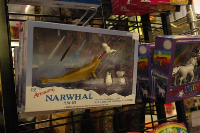 There Are No Captive Narwhals is listed (or ranked) 2 on the list 19 Bizarre Things You Didn't Know About Narwhals
