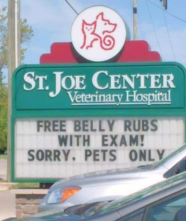 Let's Hope They Don't Go... is listed (or ranked) 3 on the list 20 Extremely Clever Vet Signs