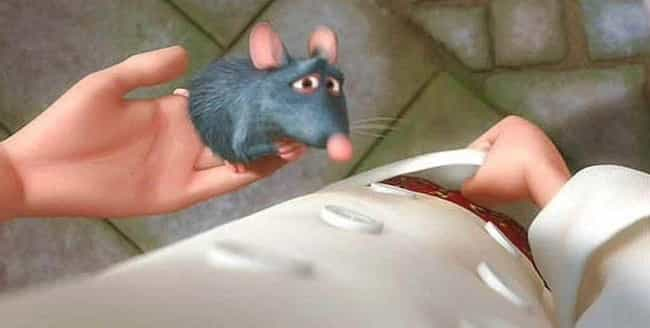In Linguini's Pants is listed (or ranked) 2 on the list Adult Moments in Ratatouille You Never Noticed