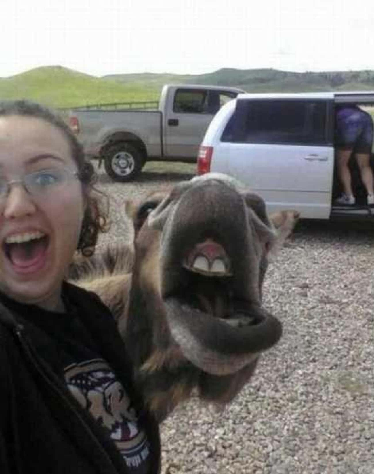 There's Someone Behind You is listed (or ranked) 2 on the list The Greatest Double Photobombs of All Time