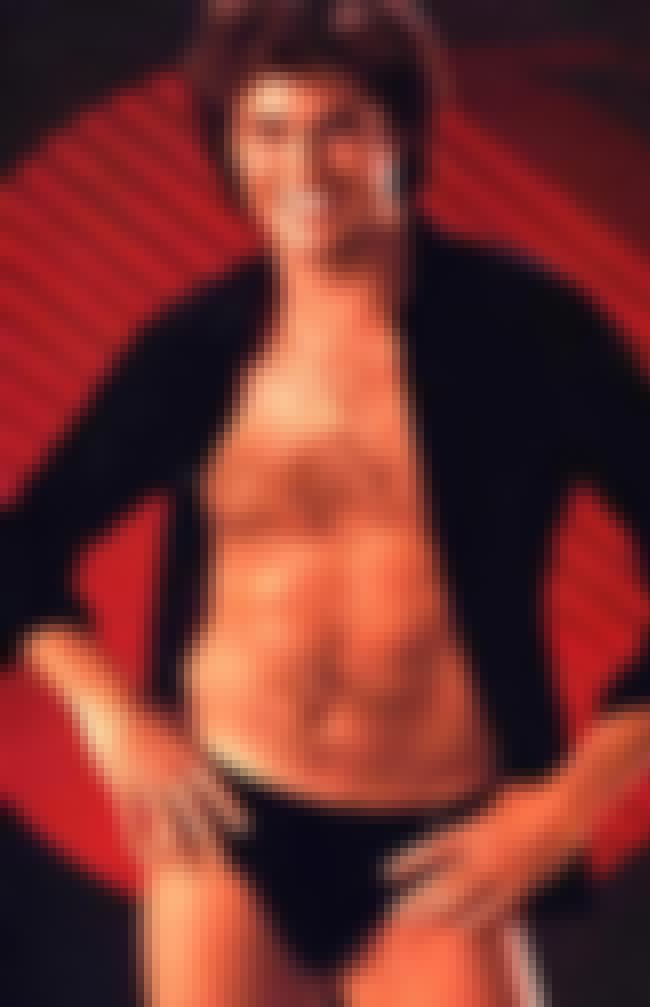 Hassle the Hoff is listed (or ranked) 3 on the list The Funniest Moments in Speedo History