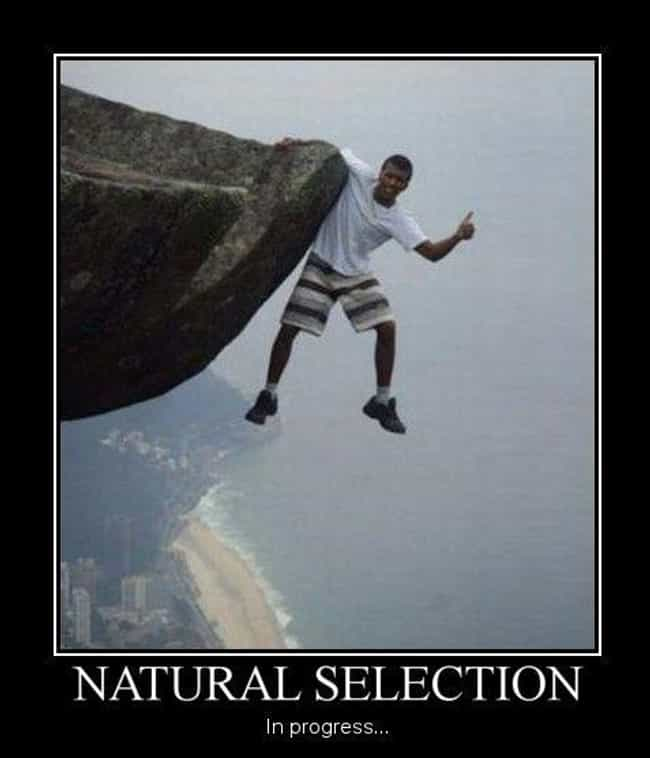 Cliffhanger is listed (or ranked) 4 on the list Future Darwin Award Winners Caught on Camera
