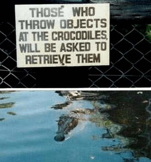 Random Funniest Signs at the Zoo