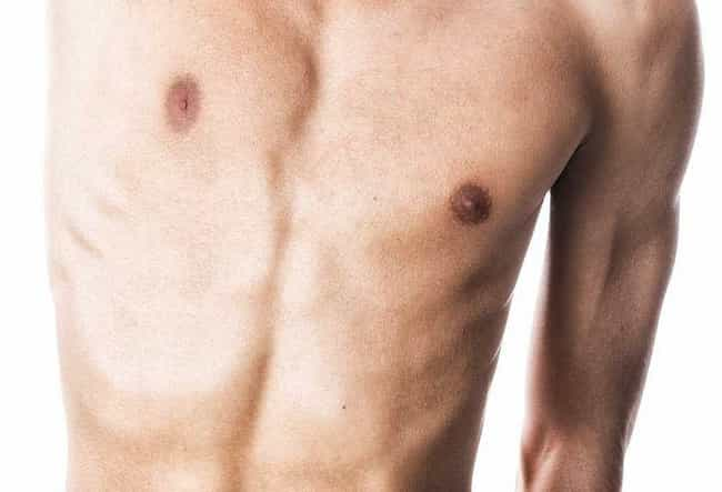Male Nipples is listed (or ranked) 2 on the list Surprising Traits You Didn't Know Were Vestigial