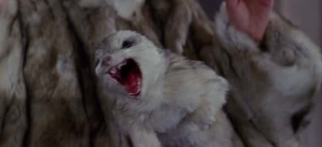 The Angry Fur Coat is listed (or ranked) 15 on the list Every Ghost in the First Two Ghostbusters Movies