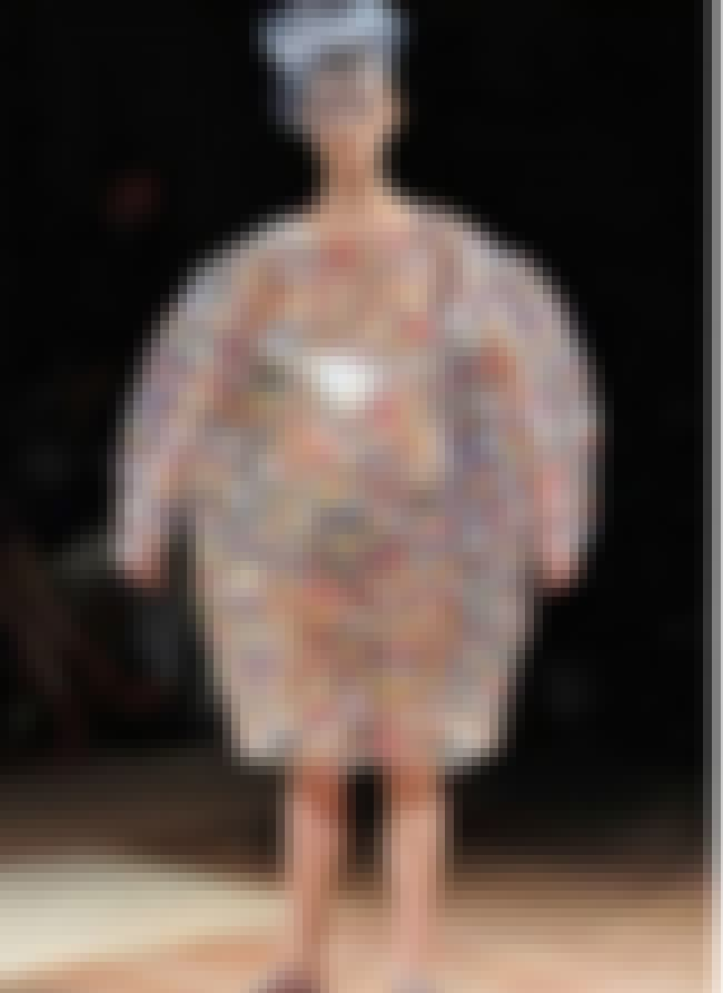 Sumo Suit Fashion is listed (or ranked) 3 on the list The Worst Fashion Fails in the History of the Internet