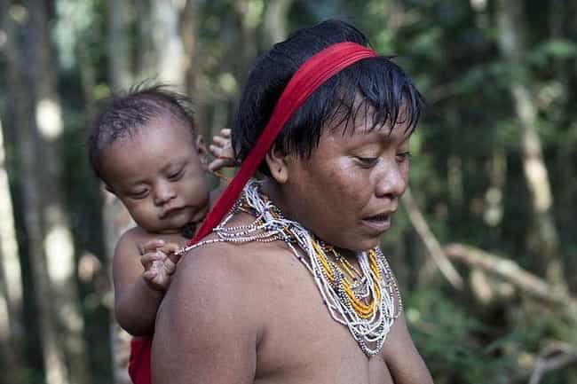 The Yanomami Will Eat Your Ash... is listed (or ranked) 4 on the list Crazy-Fascinating Food Traditions From Religions Around The World